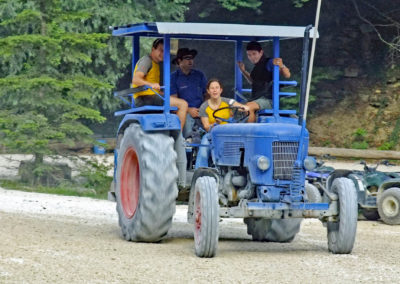 2010-LM-TraktorDaniela-01